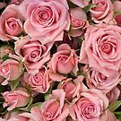 Pink Roses by Ludwig Wagner