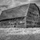 B&W Barn by Bev Merrett