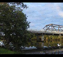 Dawson Bridge & A Tree by Jason Allan