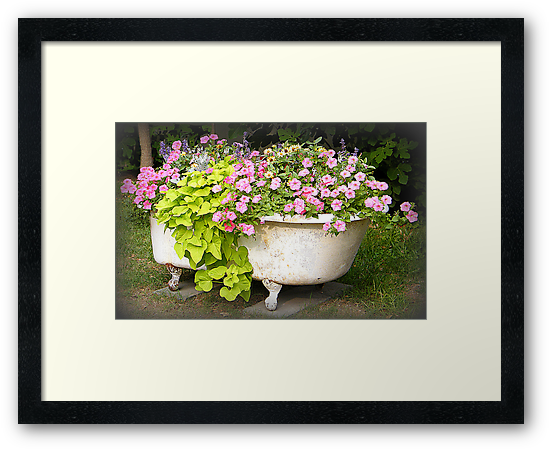 Flower Garden in a Bathtub by WeeZie