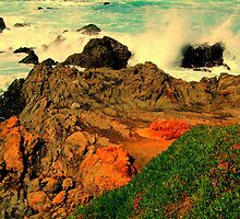 Hawaiian Series V by Ascender Photography