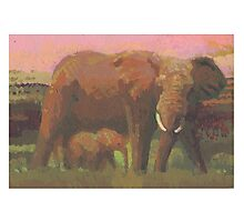 Elephants 4 Photographic Print