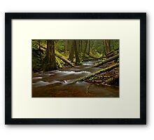 Panther Creek Landscape Framed Print