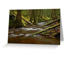 Panther Creek Landscape Greeting Card