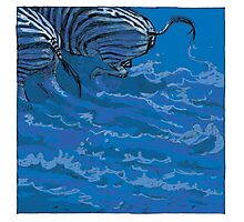 BLUE ZEBRAS Photographic Print