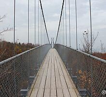 A Walk on the Suspension Bridge by boydhowell
