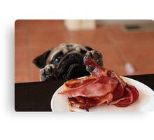Want! Bacon! Stat! Canvas Print