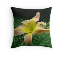 With the Greatest of Ease Throw Pillow
