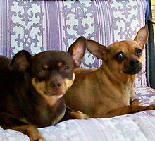 Minnie and Nina Relaxin' by Sherri Fink