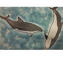Dolphins romping in the ocean, watercolor Photographic Print