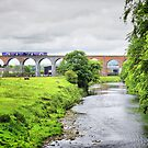 Whalley Viaduct. by JacquiK