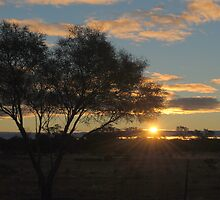 Sunset this evening June 8 2011 by outbackwriter