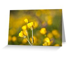 Let the sun shine Greeting Card