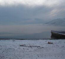 The beach in winter by spikeandgizmo