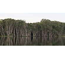 Lake Ainsworth, New South Wales Photographic Print