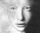 Aller en Blanche with Sprig by Cynthia Lund Torroll