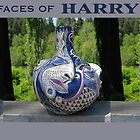 Harry POT by Sally Sargent