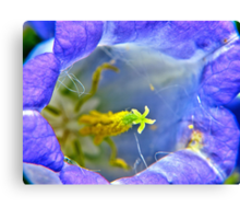 Botanically Explicit - Flower Macro Canvas Print