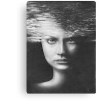 Forty Seventh Fall Canvas Print