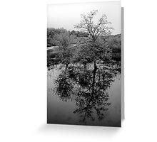 Concord River Reflections - Sudbury 2011 Greeting Card