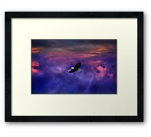 Up where the Eagle flys Framed Print