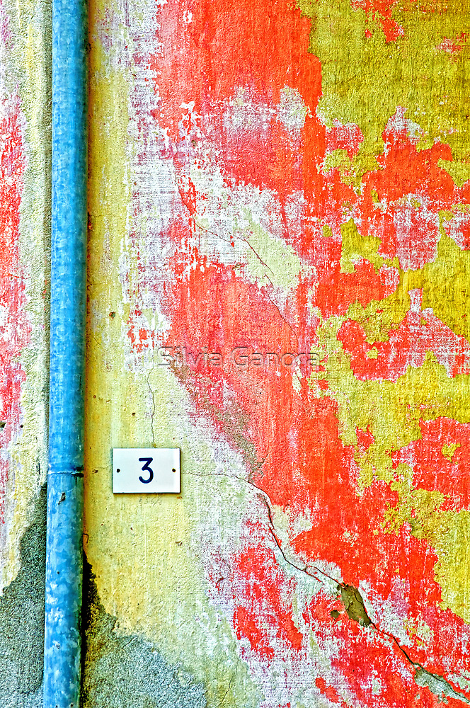 Drainpipe, amazing wall and number three by Silvia Ganora