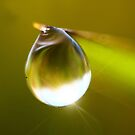 I LOve Your Light by Graeme M