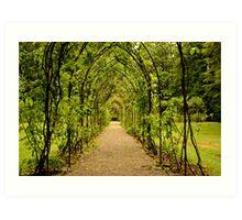 Garden Archway Art Print