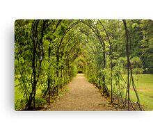 Garden Archway Metal Print