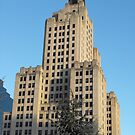 Bank of America Building by Erika Smith