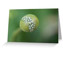 Popping out Greeting Card