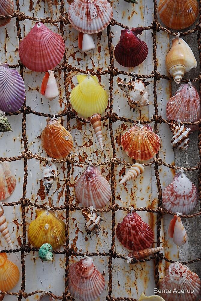 Shell art by julie08
