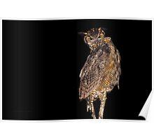 Nocturnal Hunter (Great Horned Owl) Poster