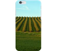 Field with patterns iPhone Case/Skin