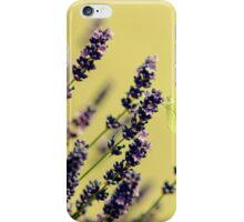 Butterfly on lavender flowers iPhone Case/Skin