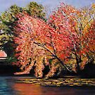 Hampton Ponds Autumn by Richard Nowak