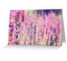 Violet... Greeting Card