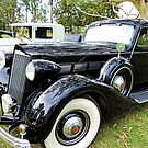 1930's Black Packard with Gold Cormorant by Marilyn Harris