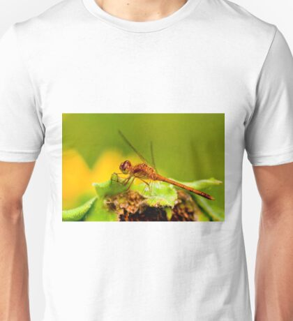 White Faced Meadowhawk Dragonfly Unisex T-Shirt