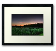 First Ray of Sunlight on Swamp Framed Print