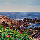 Maine's Rocks by Richard Nowak