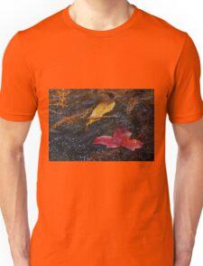 Freezing Unisex T-Shirt