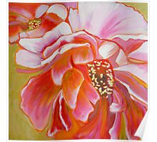 Peony Exuberance, mixed media on canvas Poster