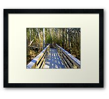 Boardwalk at Blackwater Framed Print