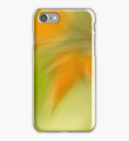 A Glimpse of Spring/Autumn iPhone Case/Skin