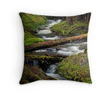 Green Channel - Olympic N. F. Throw Pillow