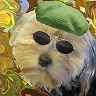 My Kool Dog by Linda Miller Gesualdo