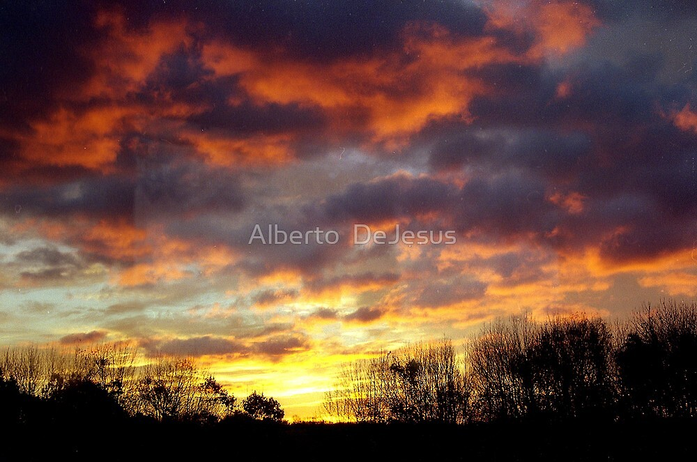 Autumn Sunrise  by Alberto  DeJesus