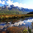 Mirror Lakes. South Island, New Zealand. (5) by Ralph de Zilva