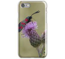 Six-spot Burnet Moth iPhone Case/Skin